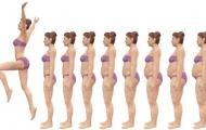Как похудеть: самые важные принципы
