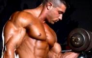 Обрастаем мышцами, но не жиром